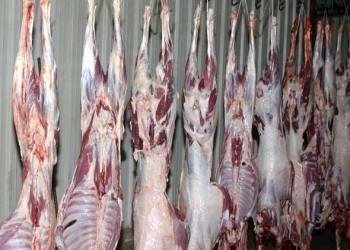 تونس اليوم - إنخفاض أسعار اللحوم في تونس لتصل إلي  500ر21 دينارا
