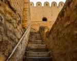 تونس اليوم - وزير السياحة يؤكد ان مهرجان المولد النبوي في القيروان سيكون بداية من السنة القادمة مهرجانا دوليا
