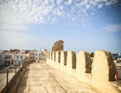 تونس اليوم - وزيرة الثقافة التونسية تعلن عودة الأنشطة الثقافية و إختمام مشروع 'إكتشف بلادك'